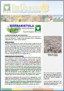 La preparazione del letto di semina della barbabietola da zucchero anb associazione - Letto di semina ...