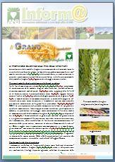Difesa grano SPIGATURA 2017
