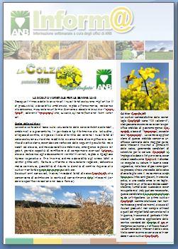 COLZA - scelta cultivar 2018